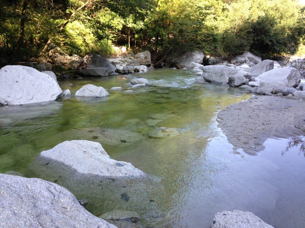 テンカラオススメの川