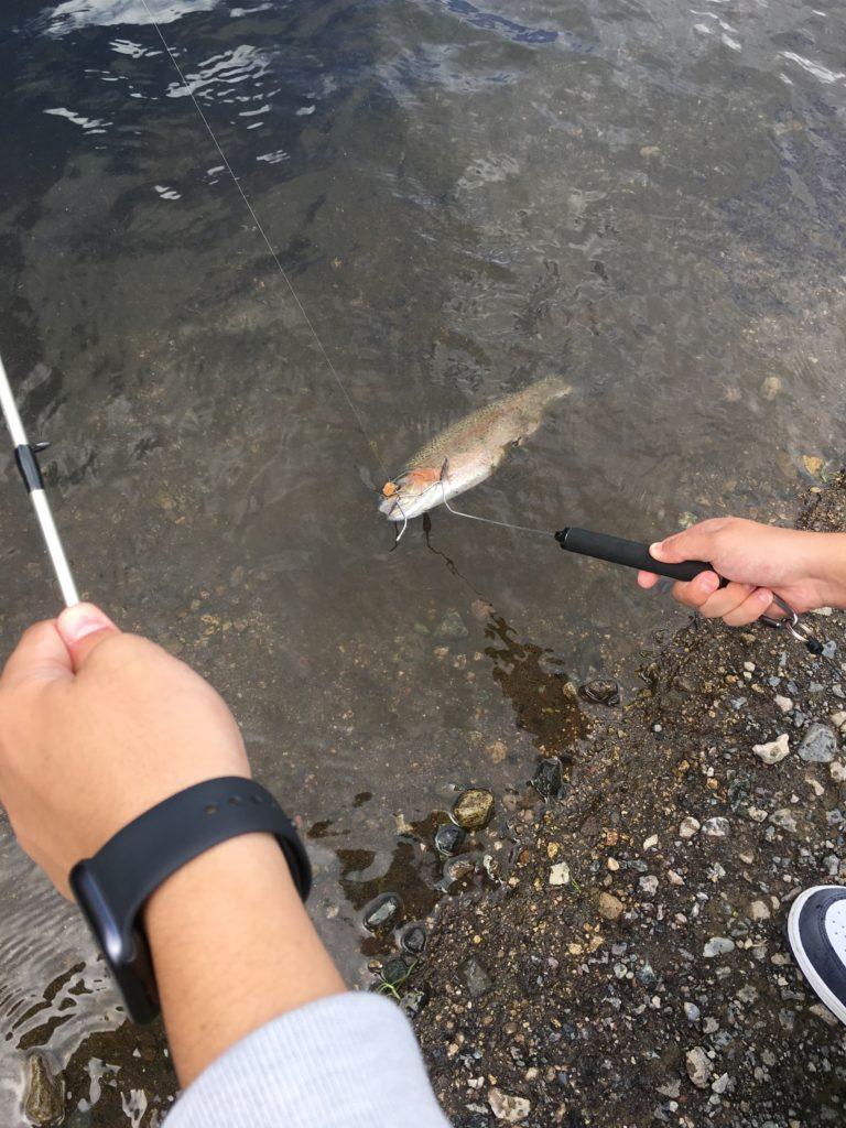イワナセンター 釣果 大物 色物 レギュレーション フェザー 縦釣り バチプロ アクセス 初心者