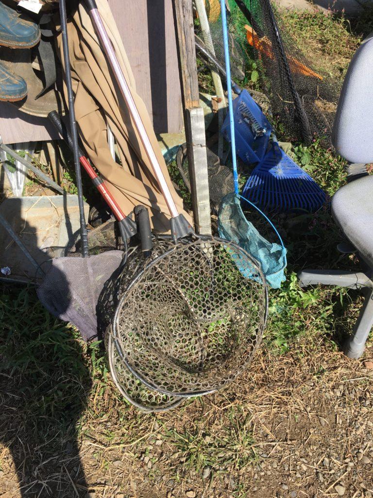 寄居フィッシング 管理釣り場 レギュレーション 大物 持ち帰り アクセス 縦釣り フェザージグ 釣れない アルビノ お得 LINE 情報