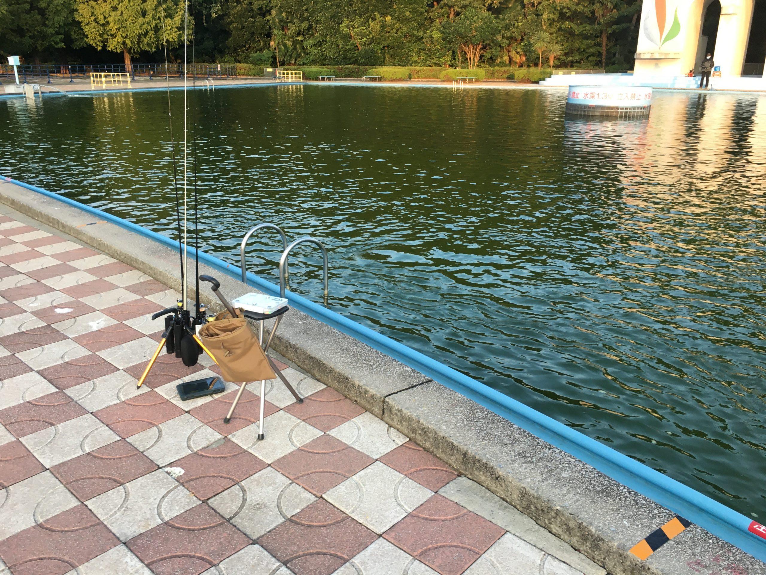 さいたま水上公園 釣果 フェザー レギュレーション 大物 色物 料金 サービスデー プールフィッシング さいたま 川越水上公園 縦釣り バベルエース ネオスタイル