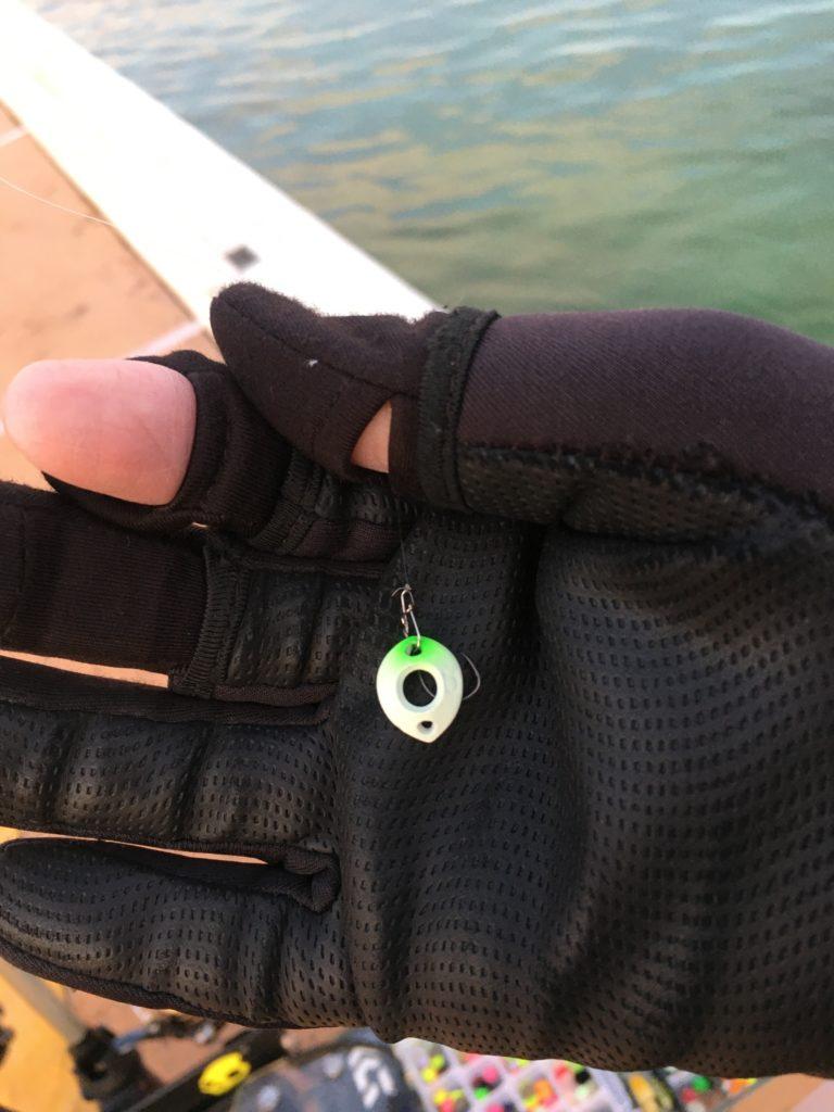 川越水上公園 さいたま水上公園 バベルエース バベルWZ 縦釣り ロブルアー しもきん 貧乏釣り部 はなさき水上公園 バチプロ 朝イチ 大物 レギュレーション ネオスタイル