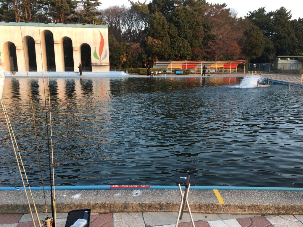 さいたま水上公園 はなさき水上公園 川越水上公園 しらこばと プールフィッシング 初心者 甥っ子K スプーン 小型変形 釣れない サクラマス 放流 大物 捌き場 ファミリー