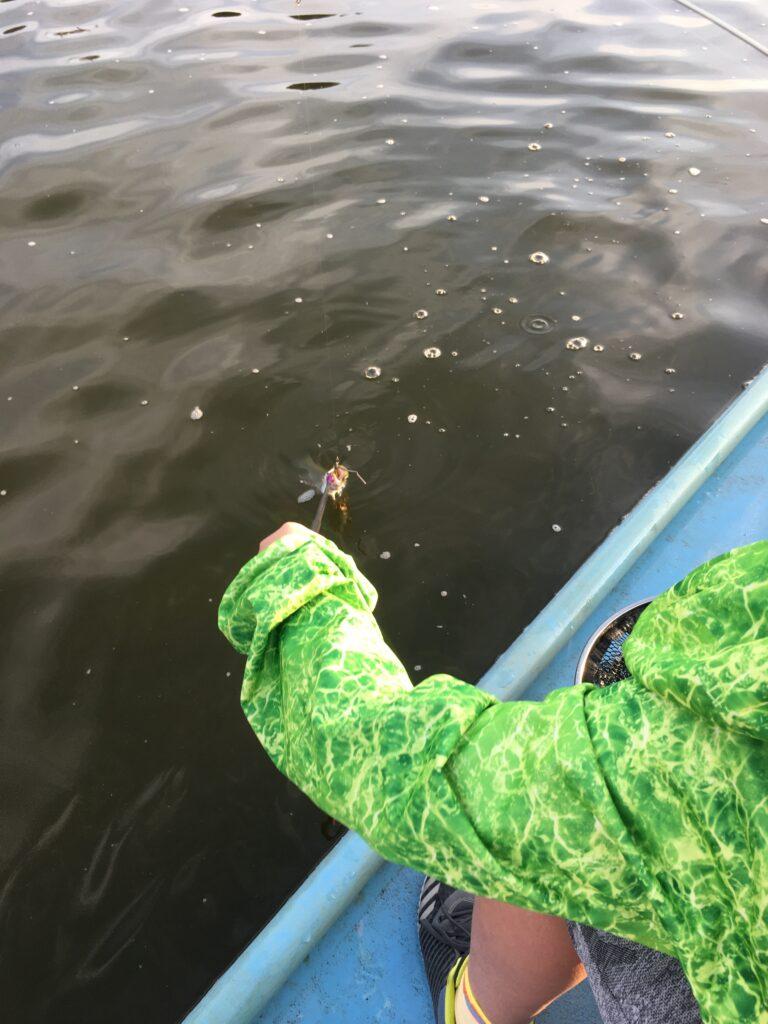さいたま水上公園 はなさき水上公園 川越水上公園 フェザー 縦釣り ロデオクラフト ノア ネオスタイル バチプロ メジャークラフト プールフィッシング